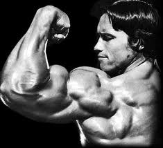 Showing muscle, Arnold Schwarzenegger
